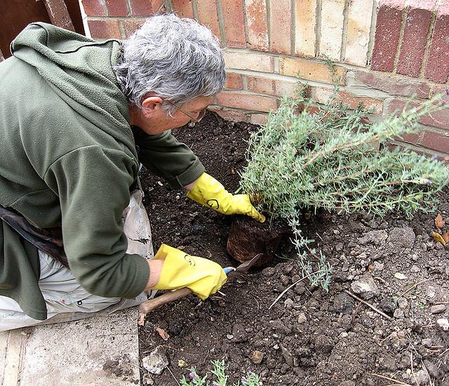 Gardening at the Corner House