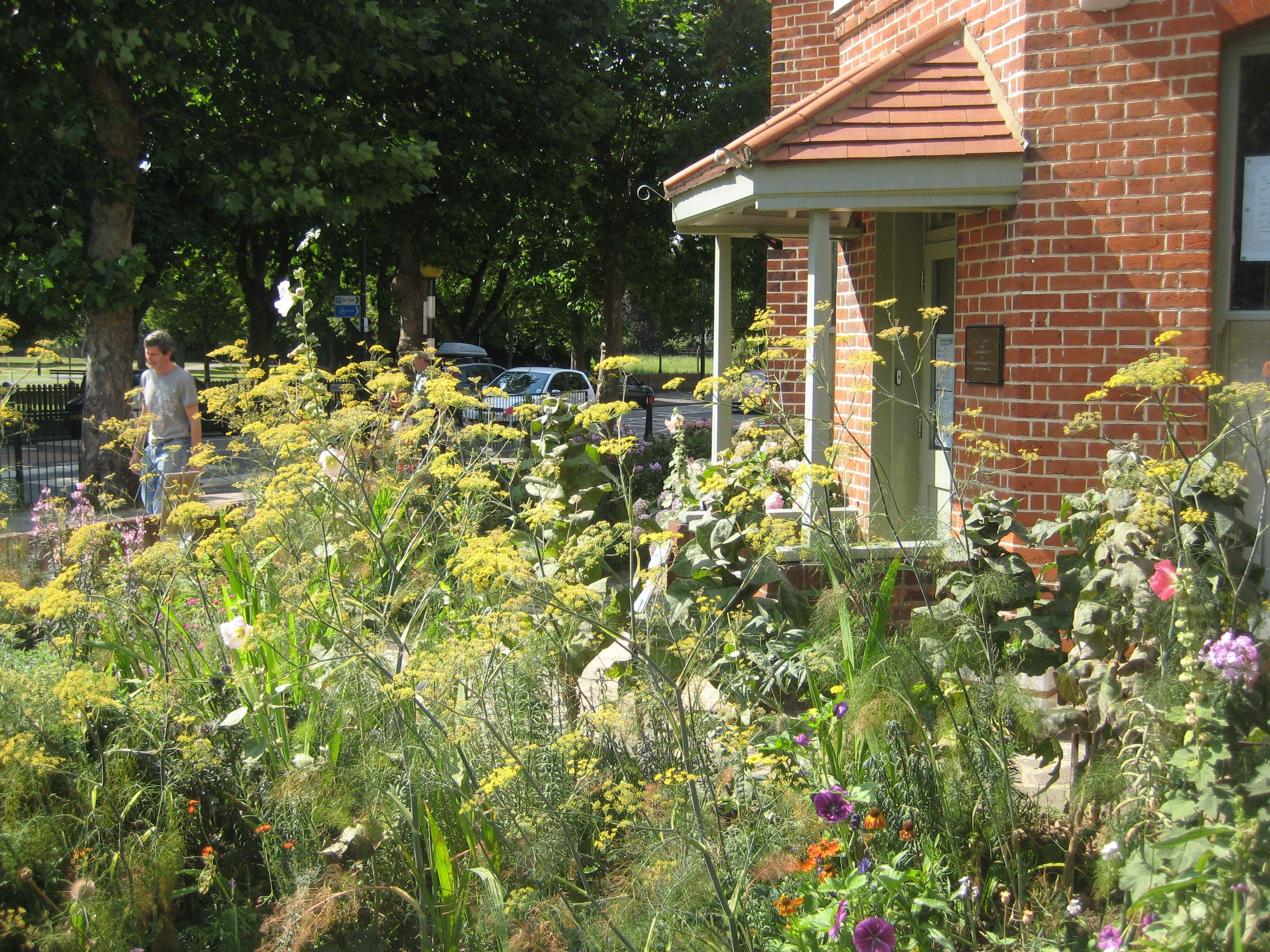 Corner House Garden in Summer