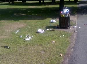 Park Litter 2